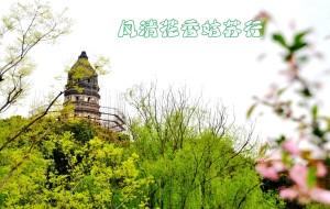 【苏州图片】風淸花香姑蘇行