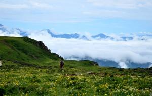 【九龙图片】#消夏计划#云朵下的那些花儿——重装徒步九顶后山