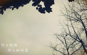 【前童图片】#消夏计划#行走,前童古镇