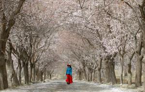 【南疆图片】西行漫记之二:2015年春天,在帕米尔高原大峡谷中穿越
