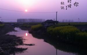 【盐城图片】大纵湖小清新文艺游——踏寻不为人知的美丽(油菜花篇)