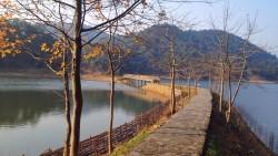 千岛湖景点-龙川湾