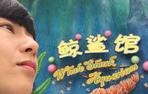 【广州长隆旅游度假区图片】来长隆见奇妙的朋友