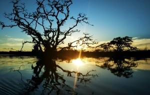 【加拉帕戈斯群岛图片】完美的厄瓜多尔(附文一)——深入神秘的亚马逊雨林