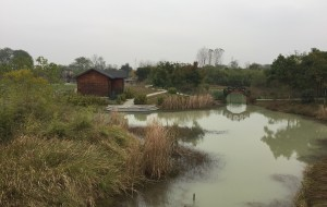 【长兴图片】长兴中国扬子鳄村保护区