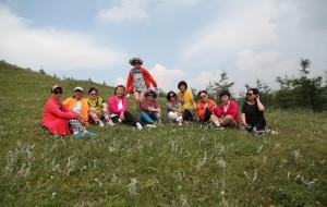 【草原天路图片】【王小小的旅途】虽不年轻 童心依在——我们相约草原行