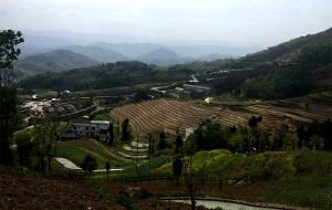 【安康图片】深居汉水河谷的奇葩