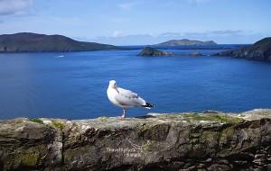【都柏林图片】爱尔兰(Ireland) 自游自驾14天,翡翠岛上追寻天籁之音。