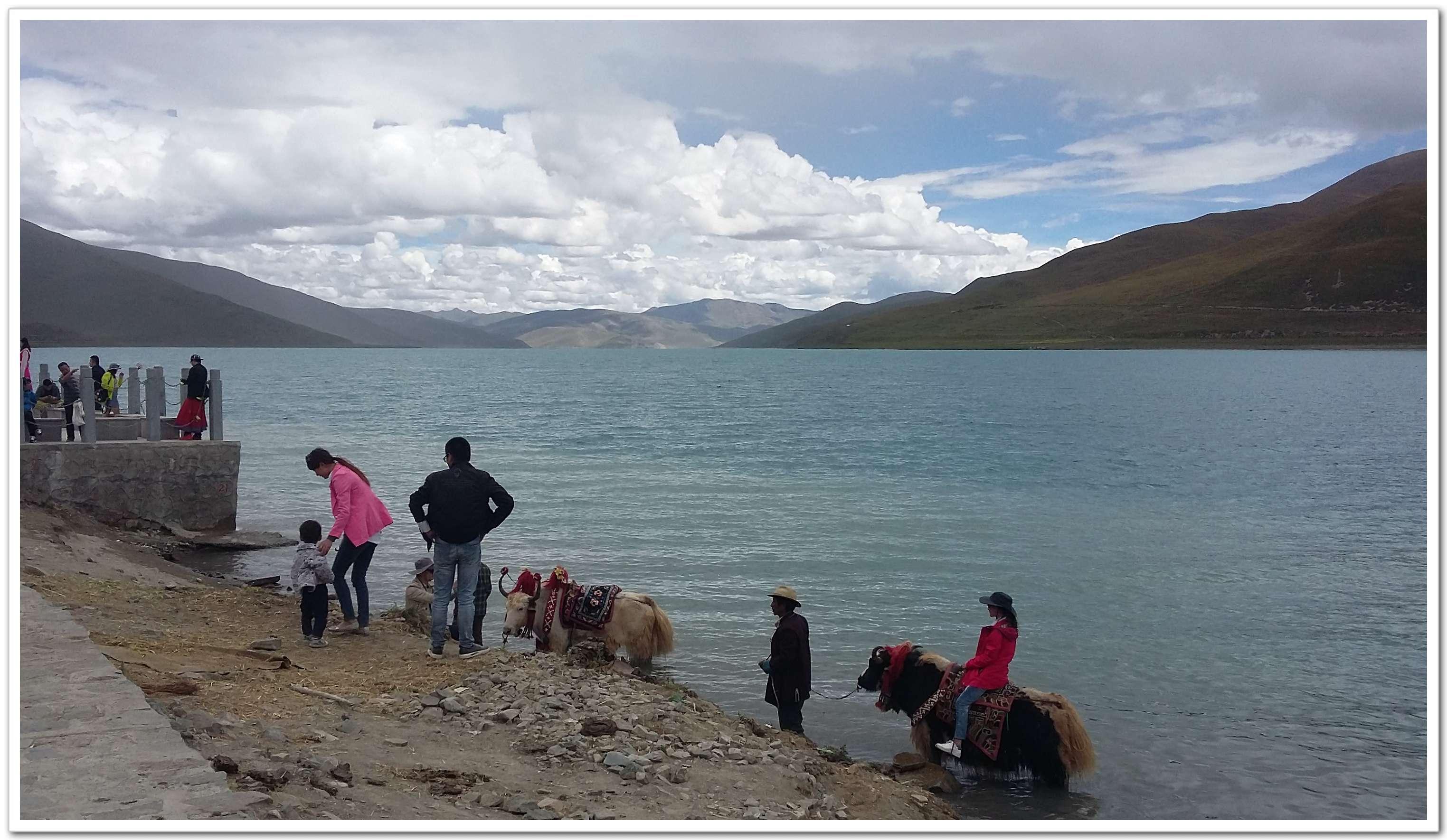 西藏 山南 羊卓雍措