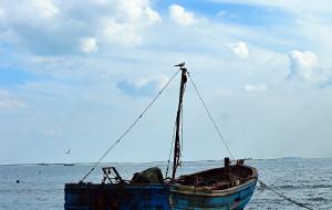 【秦皇岛图片】海浪把深秋染成蔚蓝