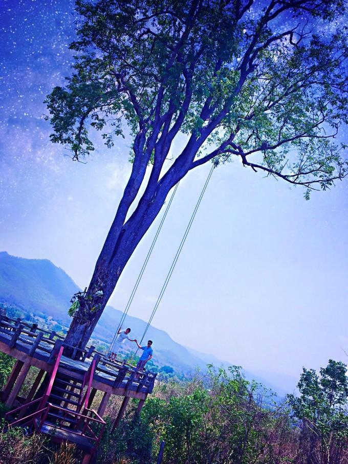 一棵参天大树,有蓝天,有白云,轻轻柔柔的吹着,暖暖的阳光下,你和我一