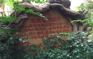 威海娱乐-山泰生态园