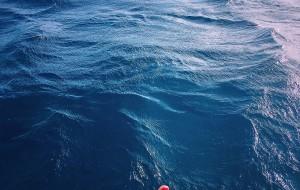 【迈阿密图片】逃往弗罗里达享受明媚阳光——7天游轮,5天迈阿密,5天奥兰多~~~ 一个会想再去的地方~~~