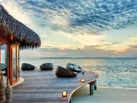神仙珊瑚岛