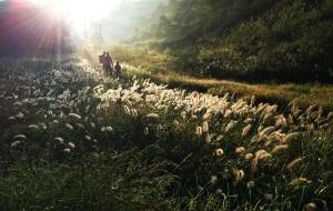 【徽杭古道图片】2016国庆亲子徒步徽杭古道,穿越障山大峡谷,游绩溪龙川