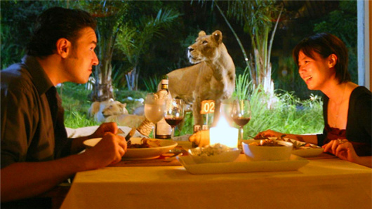 【亲子首选】巴厘岛野生动物园一日游bali safari and