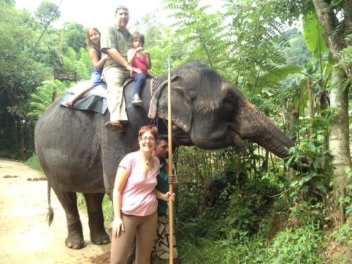 克鲁格国家公园亲子游/骑大象/探索动物/亲子互动/家庭套餐/私人营地