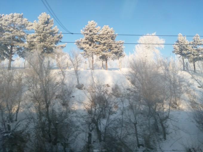 一个人的东北冰雪暴走1个月(下),长白山旅游攻略 - 马图片