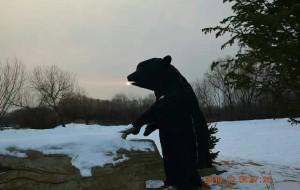 【抚远图片】祖国东极抚远今天的日出日落!乌苏里江上冬捕者🐟,把活鱼放在雪地里速冻!看着心里真的不好受啊!