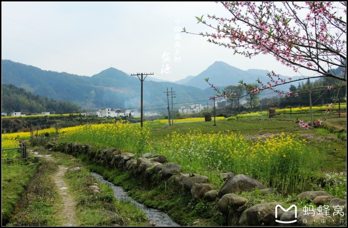 花海梯田 在江铃,景区外也到处是风景,乡村小路蜿蜒伸向远方,通往下