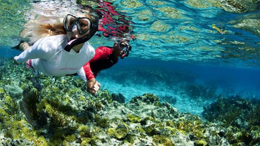 【苏梅岛出发】涛岛1站 浮潜 海底深潜一日游(音斯私人高级快艇 含
