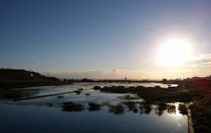 【乌海图片】乌海——黄河明珠