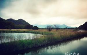 【宜昌图片】【手机也能出好片】那抹烟雨那江绿——独行神农架、大九湖、三峡
