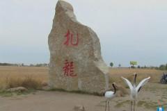 鸟和水禽的天然乐园 扎龙秋季