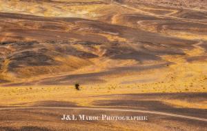 【卡萨布兰卡图片】【蜂首纪念】J&L摩行纪——再见,榴莲(Morocco)