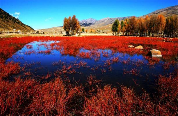 10月川藏线旅游不得不去的地方-稻城亚丁