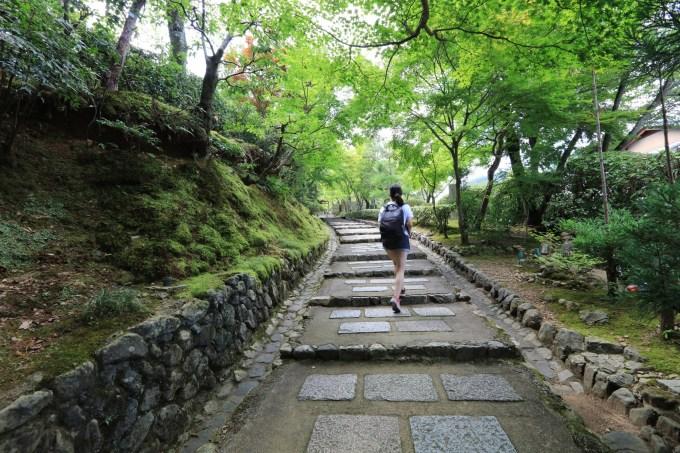 野上坡旅游景点