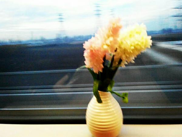 再見吧,火車