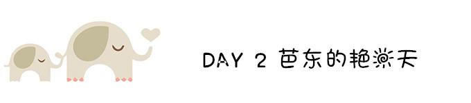 DAY 2 芭东的艳阳天