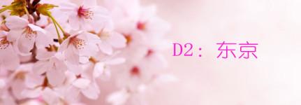 D2:东京